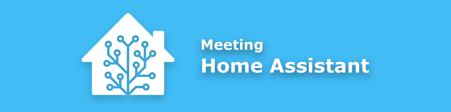 Meeting Home Assistant